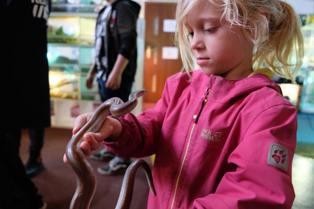 wroclaw met kinderen zoo team