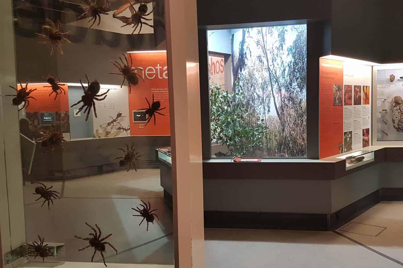 Melbourne met kinderen  museum