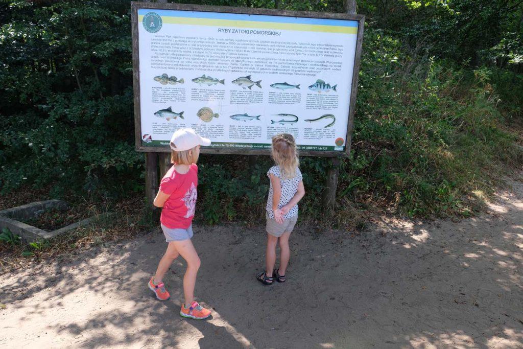 Gosań Nationaal park Wolin