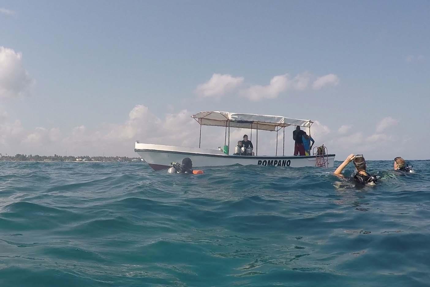 Nungwi duiken