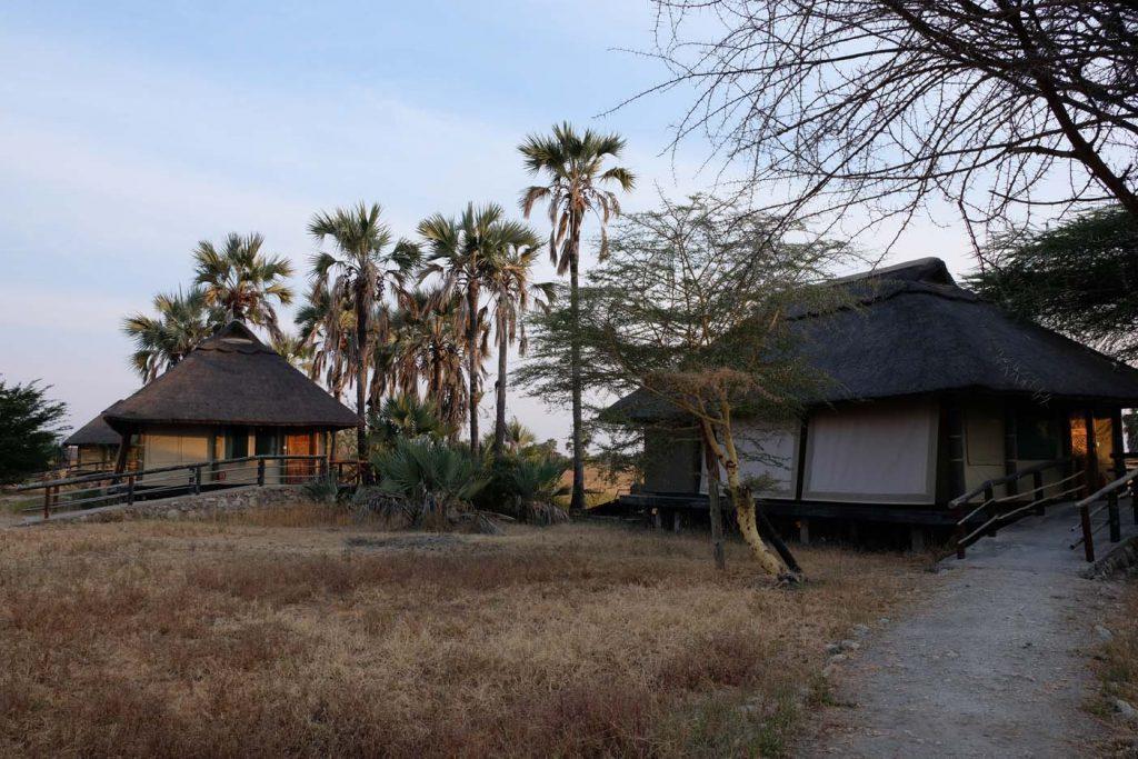 safari tanzania lodge