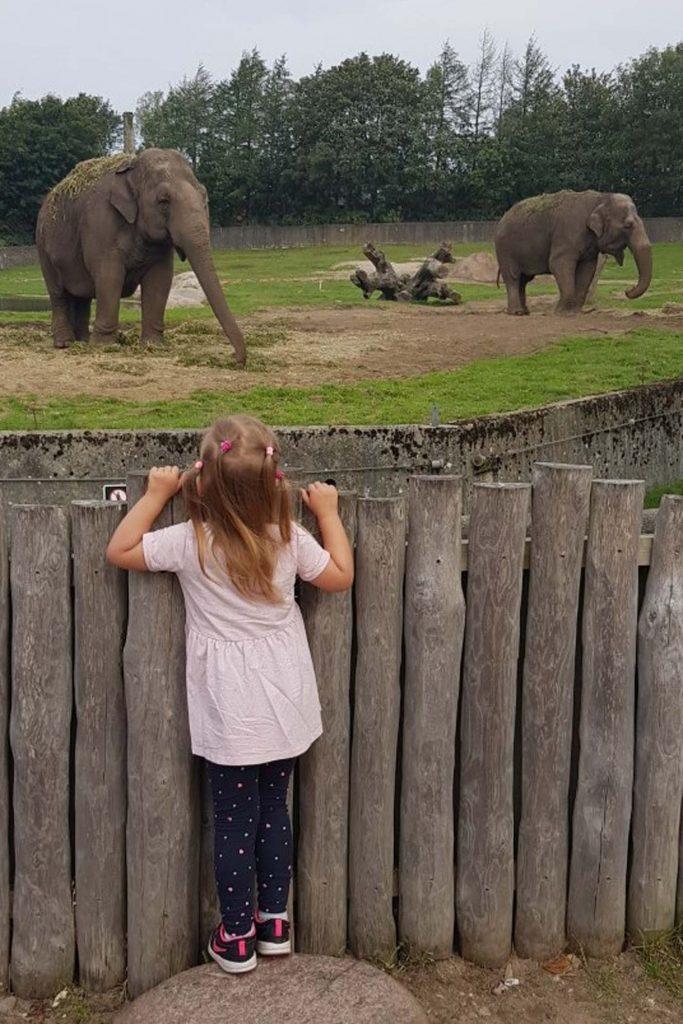 Givdskud Zoo