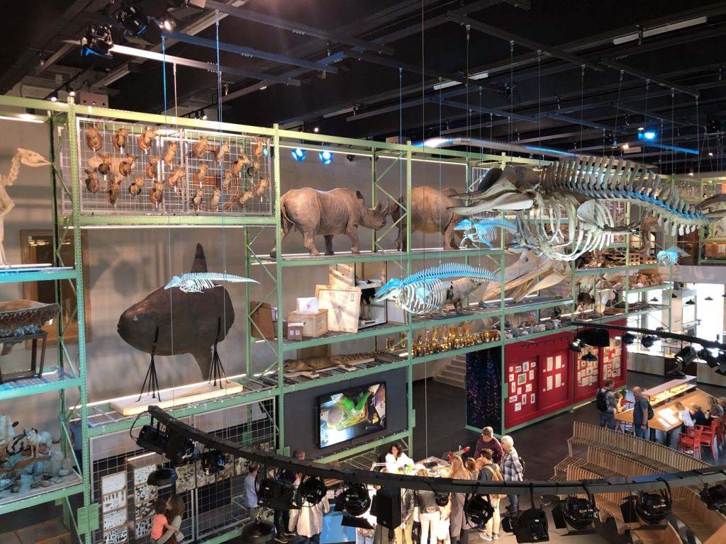 Naturalis interactief museum leiden