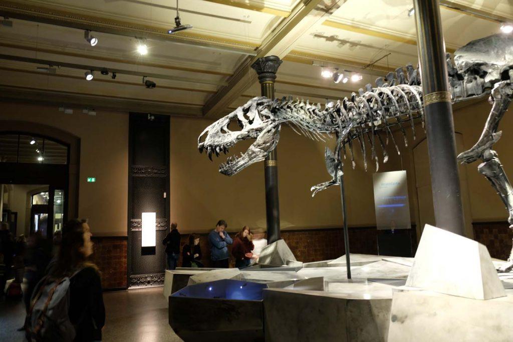 Natuurhistorisch museum Berlijn