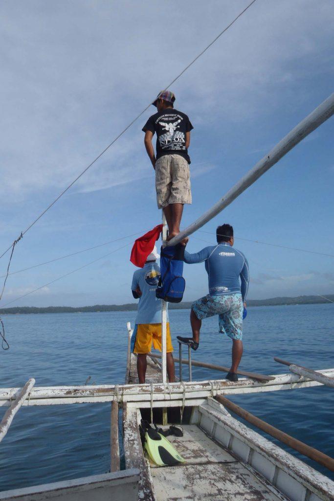 Zwemmen walvishaaien filipijnen