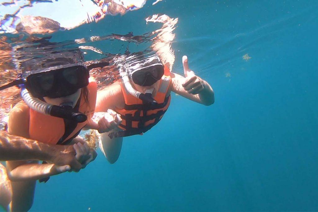 Zwemmen met walvishaaien mexico