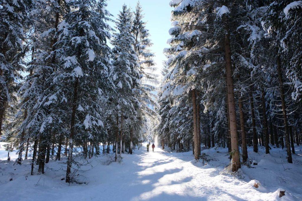 Winterwandeling Achensee