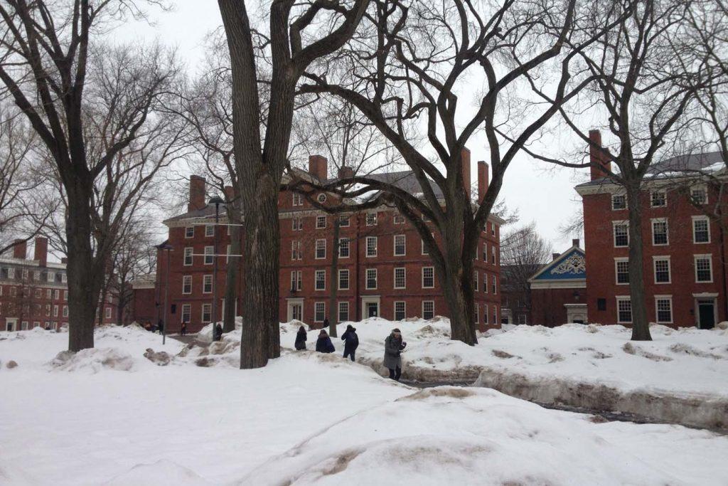 Harvard  met sneeuw