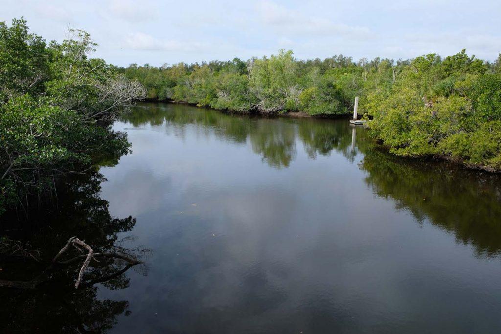 Rookery Bay Environmental Learning center