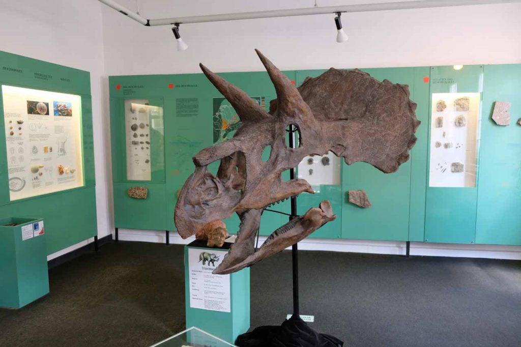 Aalen museum