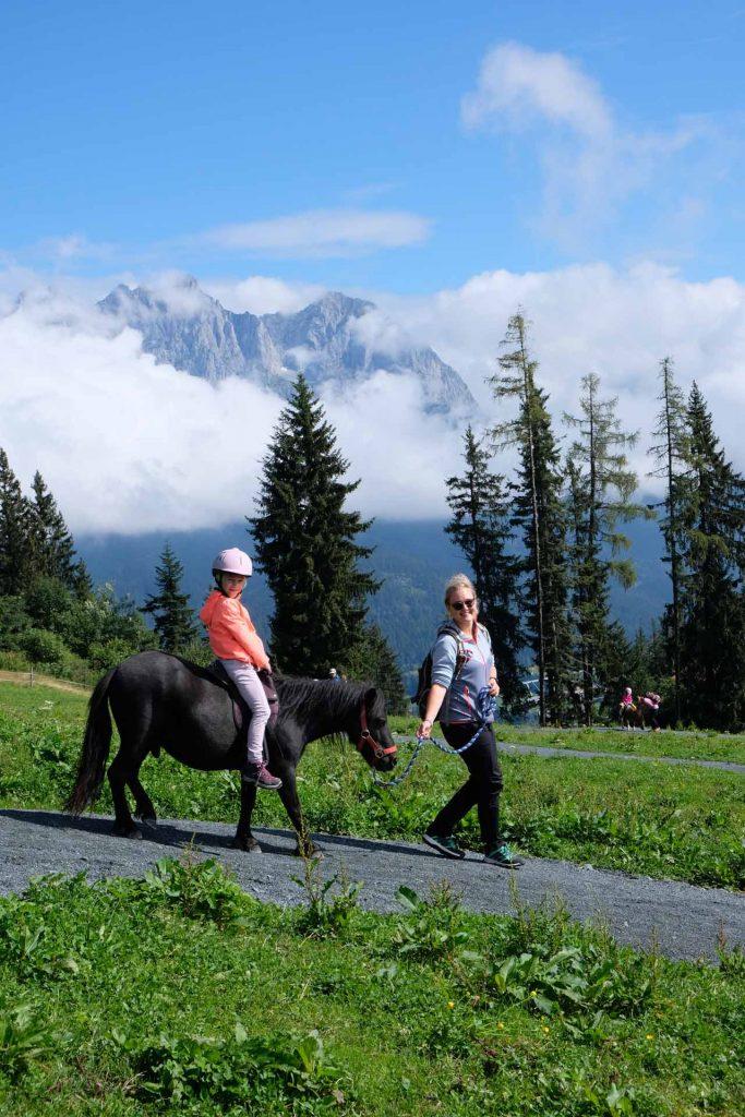 Pony Alm Wilder Kaiser