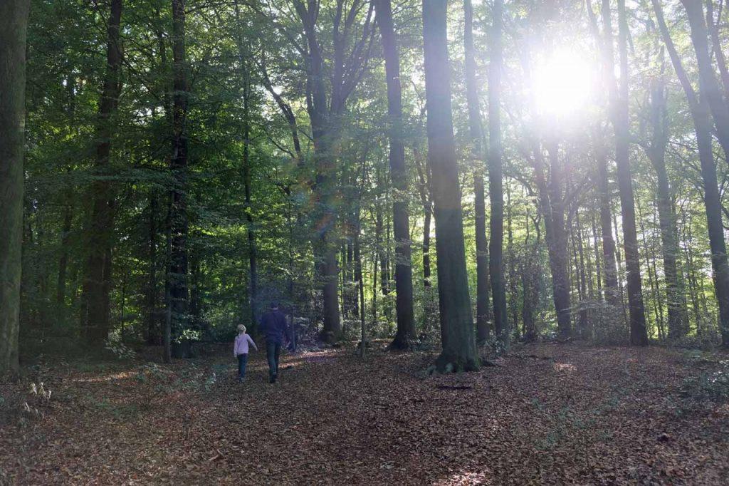 Wandeling landgoed egheria