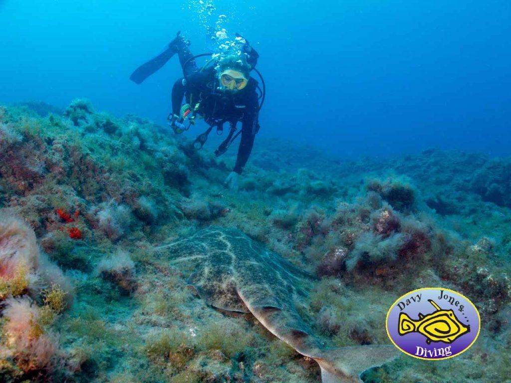 duiken gran canaria