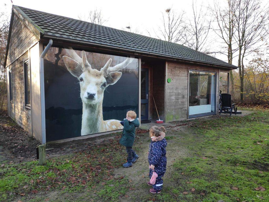 bungalow dierenbos